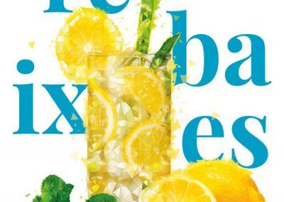 Campanya anual 2017 Eix Comercial de Lleida